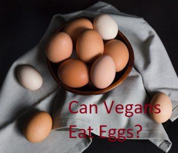 Are Eggs Considered Vegan: Can Vegans Eat Eggs